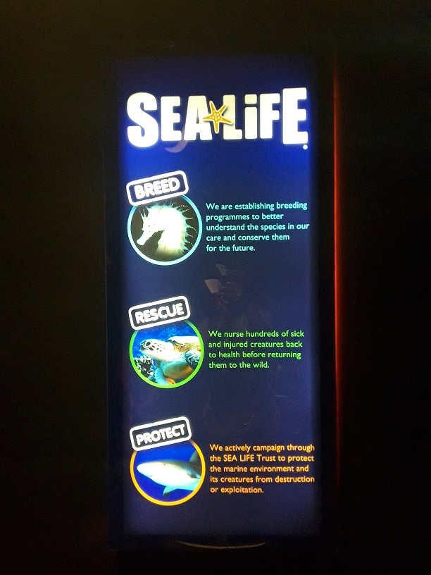 Photo of Happy Trip to Sea Life Bangkok!!!