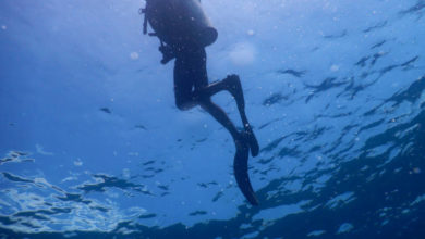 Photo of Learning to Scuba Dive in Andaman's Havelock Island (Swaraj Dweep)