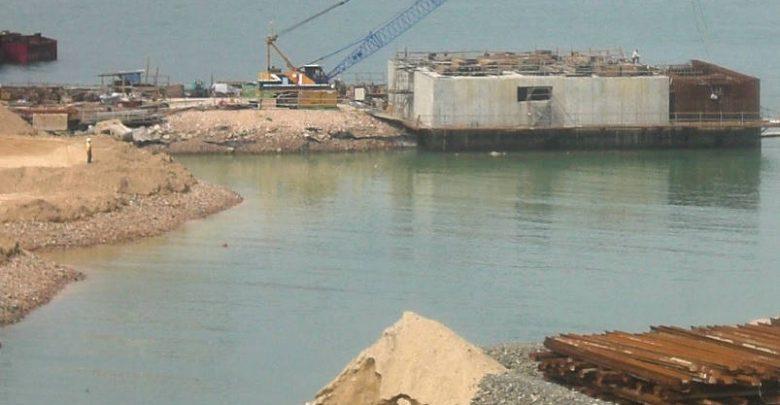 Wildlife Corals Halt Infrastructure Project Worth $14 Billion in Mumbai