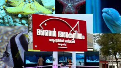Photo of Kollam Corporation in India Opens Marine Aquarium at Kollam Beach