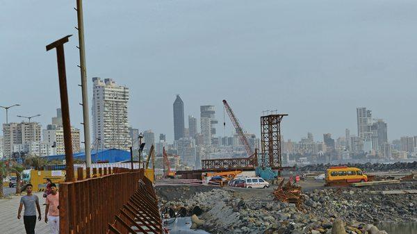 Wildlife Corals Halt Infrastructure Project Worth $14 Billion Mumbai